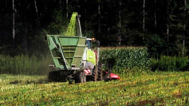 8月中旬~9月末まで★大人気の収穫作業★ハーベスターでのスイートコーン収穫作業業務風景