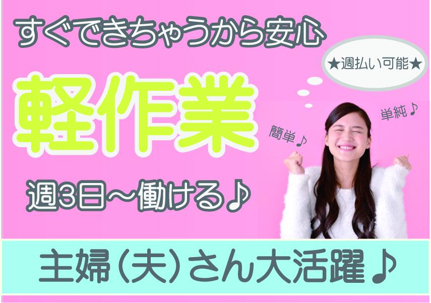 完全裏方さんワーク★週3日~勤務OK★軽作業スタッフ業務風景